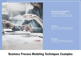 Business Process Modeling Techniques Examples Ppt Powerpoint Presentation Cpb