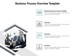 Business Process Overview Template Ppt Powerpoint Presentation Gallery File Formats Cpb