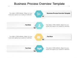 Business Process Overview Template Ppt Powerpoint Presentation Icon Background Image Cpb