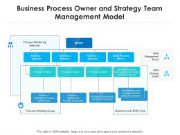 Business Process Owner And Strategy Team Management Model
