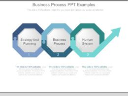 Business Process Ppt Examples