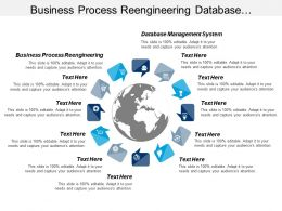 Business Process Reengineering Database Management System Marketing Targeting Cpb