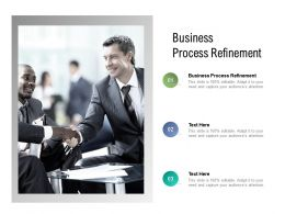 Business Process Refinement Ppt Powerpoint Presentation Icon Grid