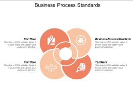 Business Process Standards Ppt Powerpoint Presentation Styles Visuals Cpb