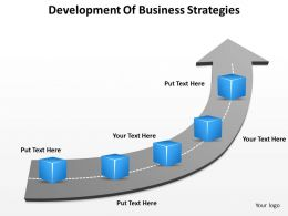 Business Processes Development Of Strategies Powerpoint Templates