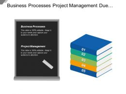 Business Processes Project Management Due Diligence Risk Framework Cpb