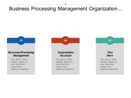 Business Processing Management Organization Structure Business Plan Policy Process Cpb