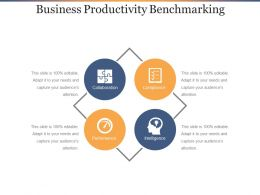 Business Productivity Benchmarking Ppt Sample Download