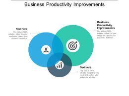 Business Productivity Improvements Ppt Powerpoint Presentation Summary Clipart Images Cpb