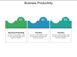 Business Productivity Ppt Powerpoint Presentation File Designs Cpb