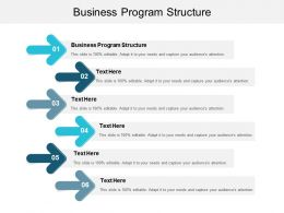 Business Program Structure Ppt Powerpoint Presentation File Images Cpb