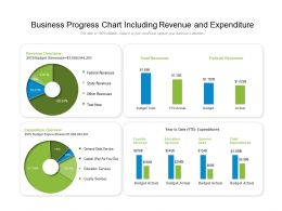 Business Progress Chart Including Revenue And Expenditure