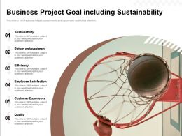 Business Project Goal Including Sustainability
