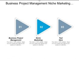 Business Project Management Niche Marketing Planning Competitive Analysis Cpb