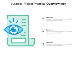 Business Project Proposal Overview Icon