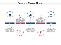 Business Project Report Ppt Powerpoint Presentation Icon Guide Cpb
