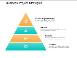 Business Project Strategies Ppt Powerpoint Presentation File Example Cpb