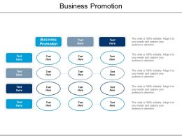 Business Promotion Ppt Powerpoint Presentation Icon Ideas Cpb