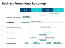 Business Promotional Roadmap International Expansion Ppt Powerpoint Presentation Icon Picture