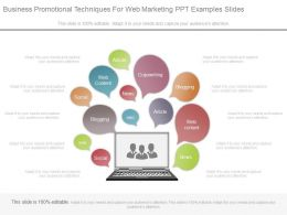 Business Promotional Techniques For Web Marketing Ppt Examples Slides