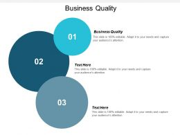 Business Quality Ppt Powerpoint Presentation File Visuals Cpb