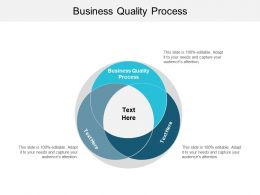 Business Quality Process Ppt Powerpoint Presentation File Information Cpb