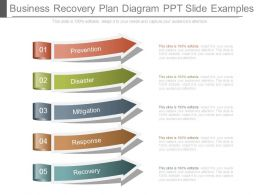 Business Recovery Plan Diagram Ppt Slide Examples