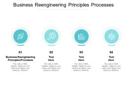 Business Reengineering Principles Processes Ppt Powerpoint Presentation Summary Guidelines Cpb