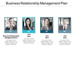 Business Relationship Management Plan Ppt Powerpoint Presentation Pictures Structure Cpb