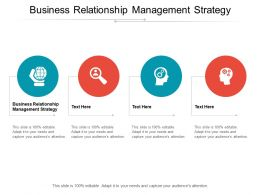Business Relationship Management Strategy Ppt Powerpoint Presentation Infographics Graphic Images Cpb