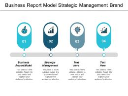 Business Report Model Strategic Management Brand Experience Marketing Cpb
