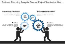 Business Reporting Analysis Planned Project Termination Strategic Initiatives