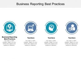 Business Reporting Best Practices Ppt Powerpoint Presentation Show Themes Cpb