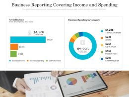 Business Reporting Covering Income And Spending