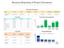 Business Reporting Of Project Parameter