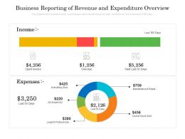 Business Reporting Of Revenue And Expenditure Overview