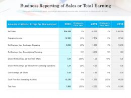 Business Reporting Of Sales Or Total Earning