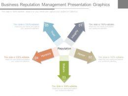 Business Reputation Management Presentation Graphics