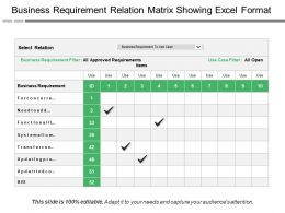 Business Requirement Relation Matrix Showing Excel Format