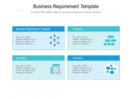 Business Requirement Template Ppt Powerpoint Presentation Professional Styles Cpb