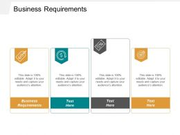 Business Requirements Ppt Powerpoint Presentation Infographics Diagrams Cpb