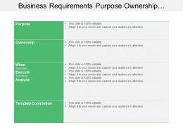 Business Requirements Purpose Ownership Execute Analyze