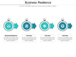 Business Resilience Ppt Powerpoint Presentation Show Example Cpb