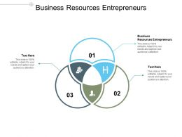 Business Resources Entrepreneurs Ppt Powerpoint Presentation Example Cpb