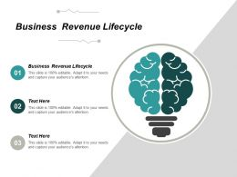 Business Revenue Lifecycle Ppt Powerpoint Presentation Portfolio Slides Cpb