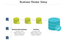 Business Review Setup Ppt Powerpoint Presentation Professional Graphics Tutorials Cpb