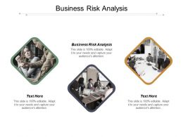 Business Risk Analysis Ppt Powerpoint Presentation Inspiration Example File Cpb