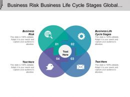Business Risk Business Life Cycle Stages Global Investment Risk Management Cpb
