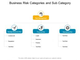 Business Risk Categories And Sub Category