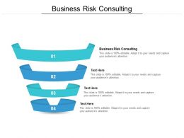Business Risk Consulting Ppt Powerpoint Presentation Styles Brochure Cpb